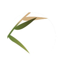 logo-b-3